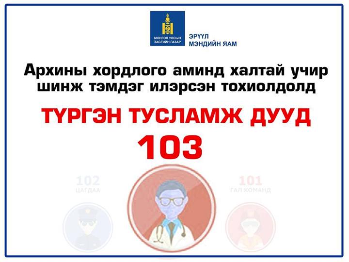 Архины хордлого аминд халтай учир дараах шинж тэмдэг илэрвэл 103т хандана уу